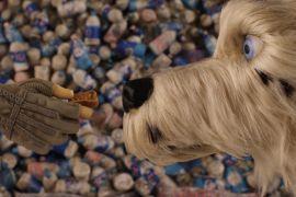 Wes Anderson volta para o universo stop-motion em Ilha dos Cachorros
