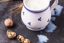 leites para substituir o leite industrializado