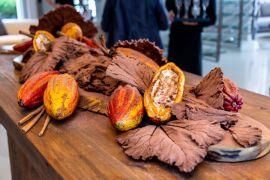 Expedição Xingu de Angelo Volpi ganhou festa super especial na Sierra Móveis