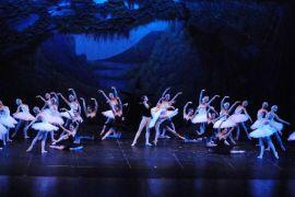 Lago dos Cisnes Teatro Positivo Clássico terá apresentação do Studio D1