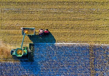 aerial-shot-aerial-view-agriculture-1595104-360x250.jpg