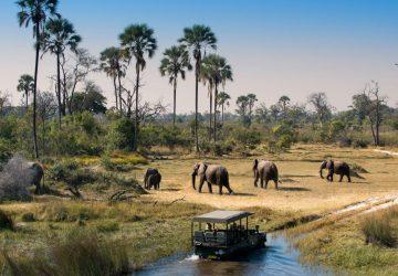Botswana-Okavango-Delta-360x250.jpg
