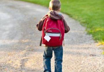 back-view-backpack-boy-207697-e1564073329130-360x250.jpg