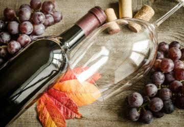 red-wine-PNJDL32-360x250.jpg