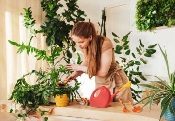 Prod-Ferramentas-para-Jardinagem-09-360x250.jpg