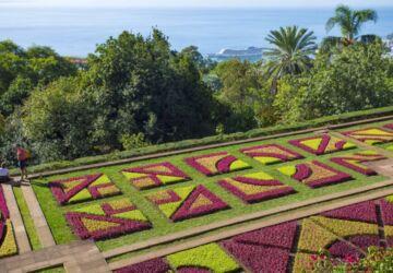 Jardim-Botanico_Natureza_BR030©Andre-Carvalho-360x250.jpg